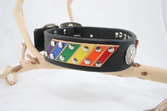Pride LGBT Custom Leather Dog Collar