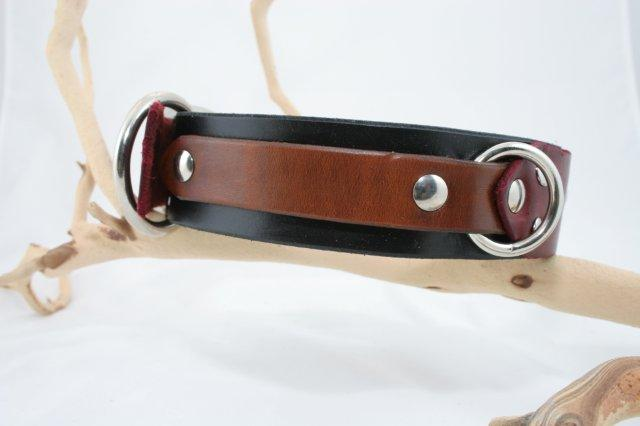 Trinity-unique-leather-band-dog-collar (5)