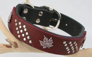 Canadian Custom Red Leather Dog Collar