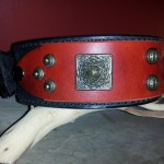 The Best Leather Collar