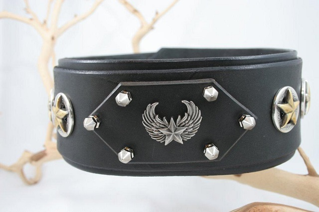 Cerberus-Designs Wide-Leather-Dog-Collar the General
