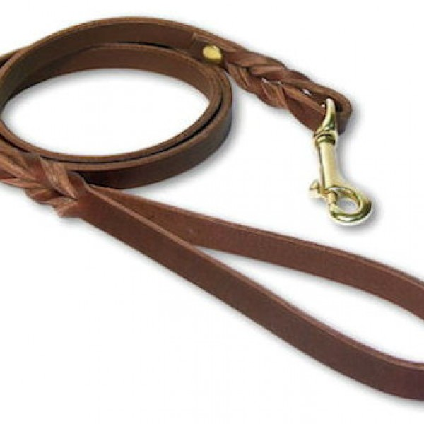plain-leash-1328054146-jpg