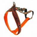 y-harness-orange-30-00-1452456182-jpg